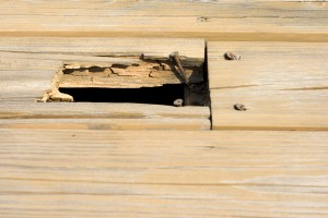 When to replace deck, CK's Windows and Doors
