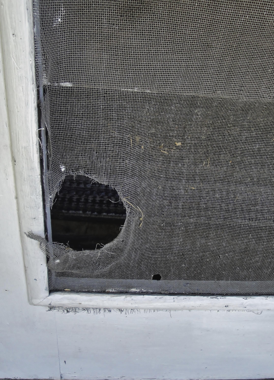 Idaho falls windows ck 39 s windows doors for Window screen replacement